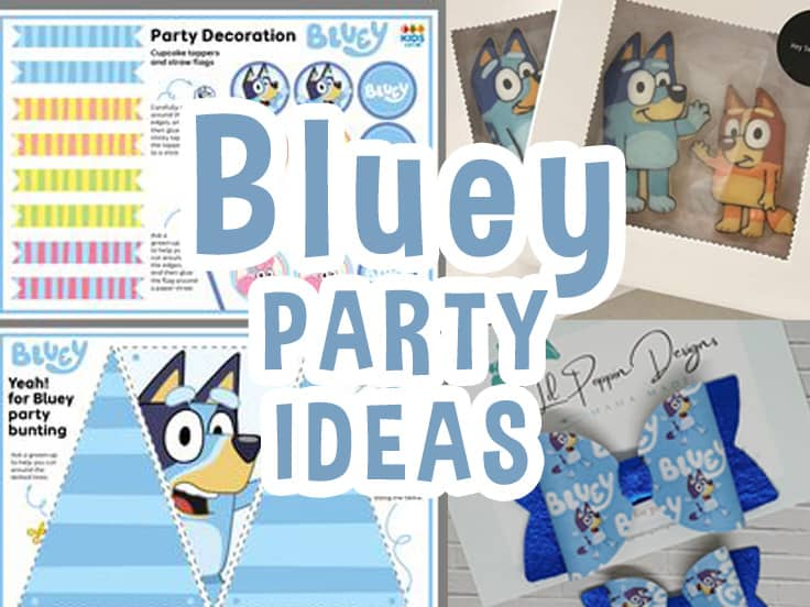 Bluey Party Ideas