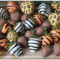 Jungle Dipped Strawberries