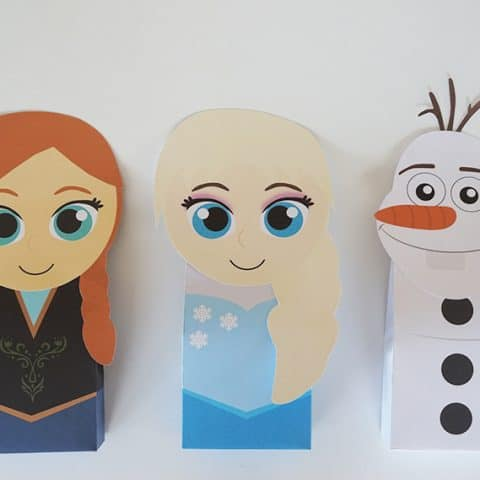 Frozen Favor Bag