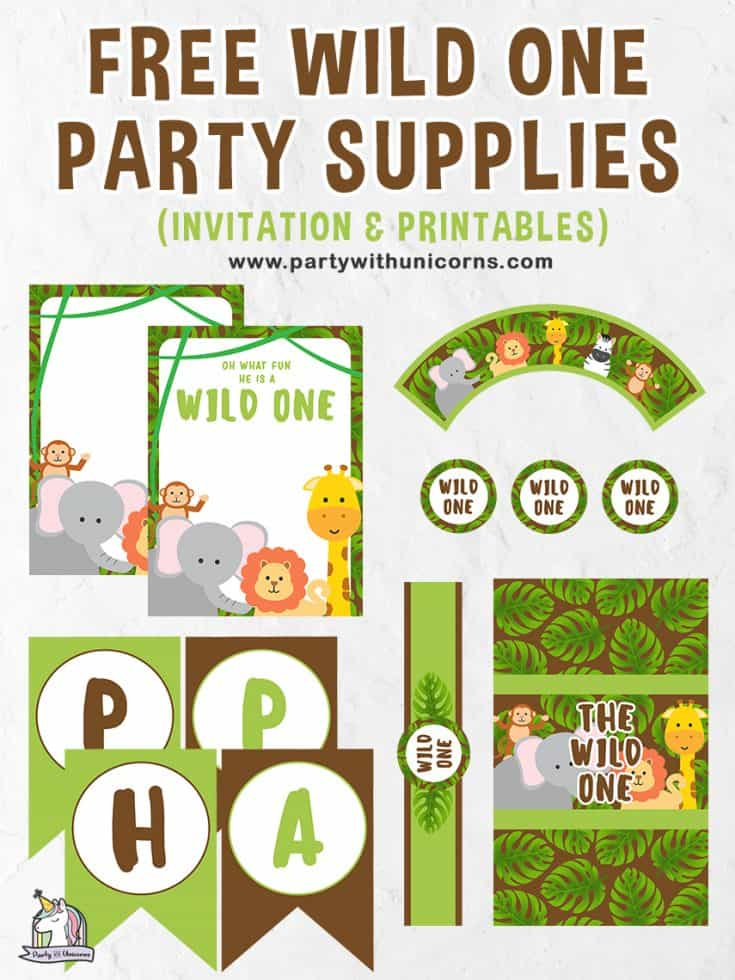 Free Wild One Party Supplies