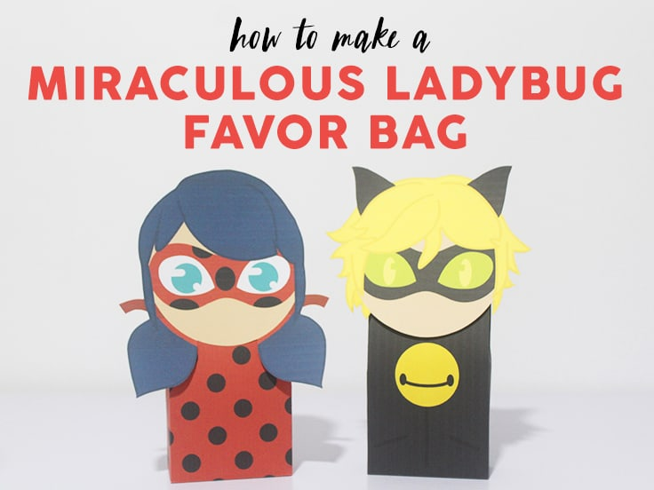 Miraculous Ladybug Favor Bag image
